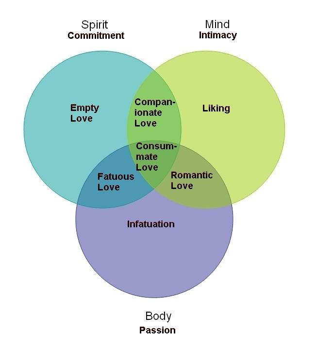 Sternberg U0026 39 S Triarchic Theory Of Love  U0026 Intrapsychic Taxonomy